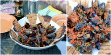 mussels collage 2